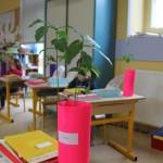 Expérience sur la germination en classe