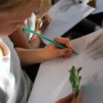 Travail d'observation au crayon